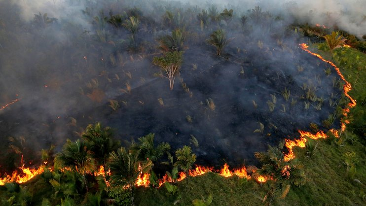 В Бразилии третью неделю продолжаются рекордные пожары