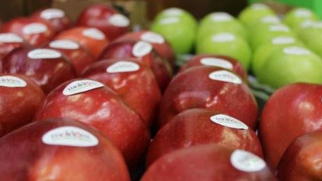 Молдова сможет экспортировать в ЕС большее количество слив, винограда и вишни без таможенных пошлин