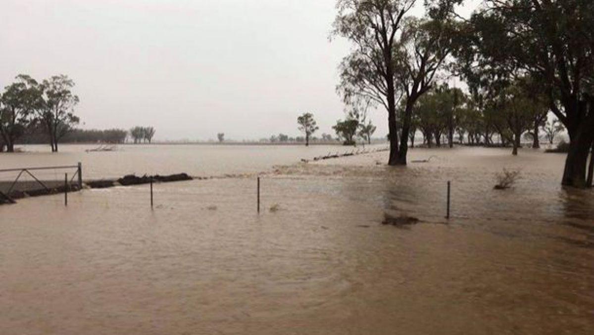 В Австралии пошел дождь. Некоторые регионы затоплены, но в других пожар еще не потушен